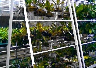 Aluminium 'A' Frames – Royal Botanical Gardens, Kew, Surrey