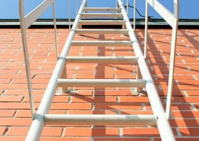 cat-ladders-02